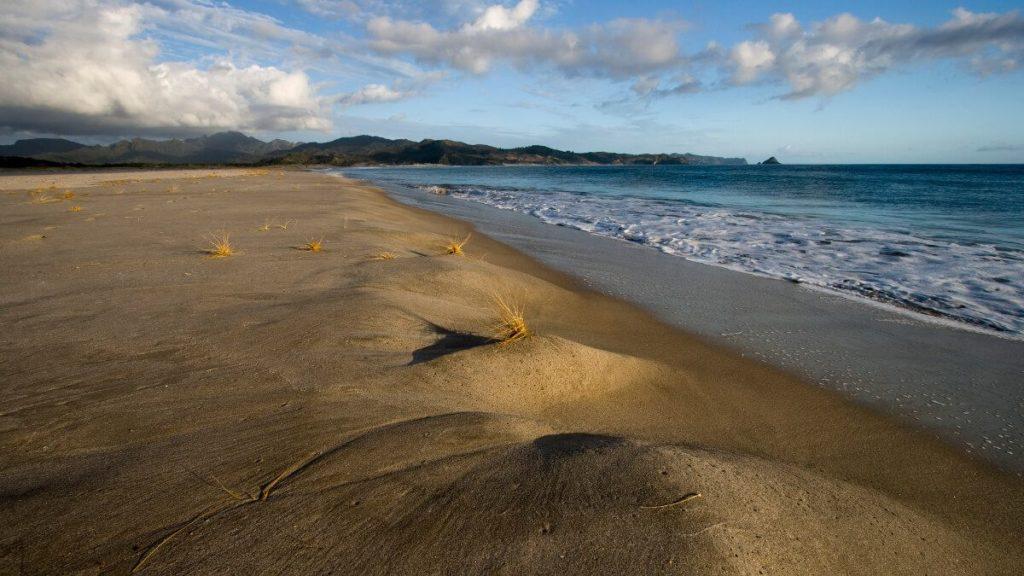Kaitoke Beach, Great Barrier Island